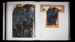 Publikation Stefan Zauner